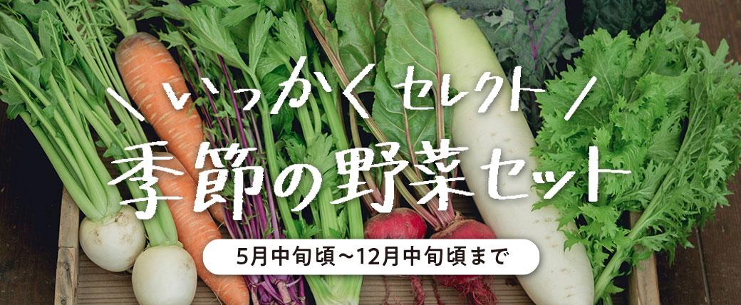 いっかくセレクト 季節の野菜セット